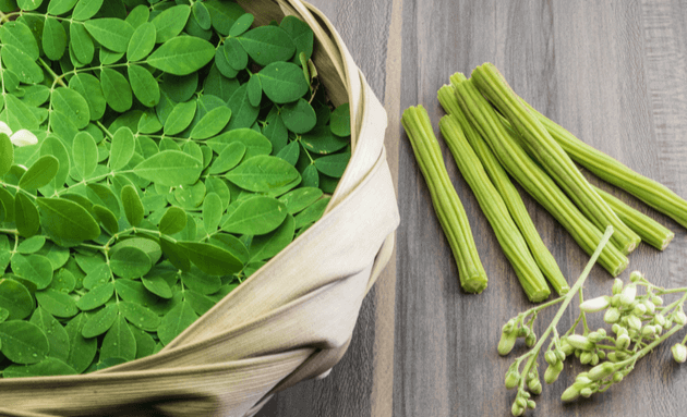 drumsticks-moringa-superfood-india-2019