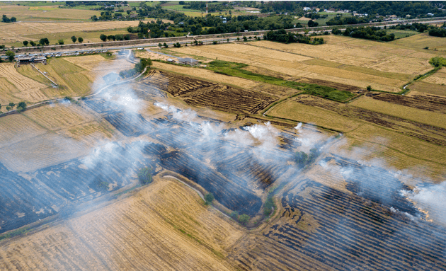 Burning-crops-can-cause-air-pollution